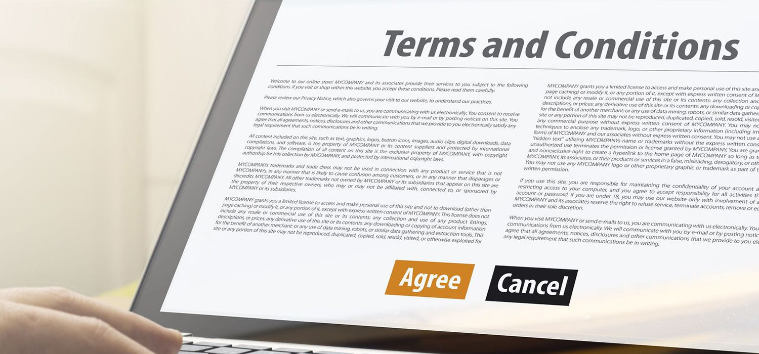 UNDERSTAND OUR WEBSITE'S TERMS & CONDITIONS
